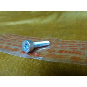 NEU Original Stihl Schraube T27 IS-M6x30-10,9 9022 341...