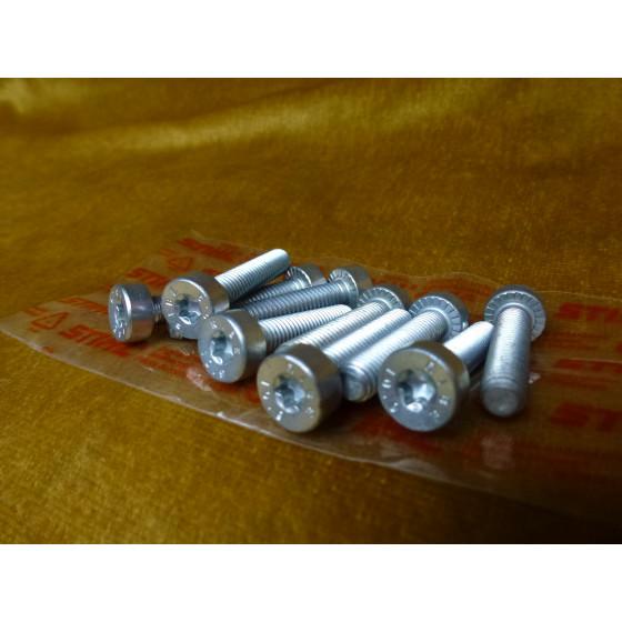 NEU Original 10x Stihl Schraube T27 IS-M6x30-10,9 9022 341 1370 / 90223411370 / 9022-341-1370