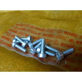 NEU Original Stihl 10x Schraube T27 IS-M5x18-10,9 9022...